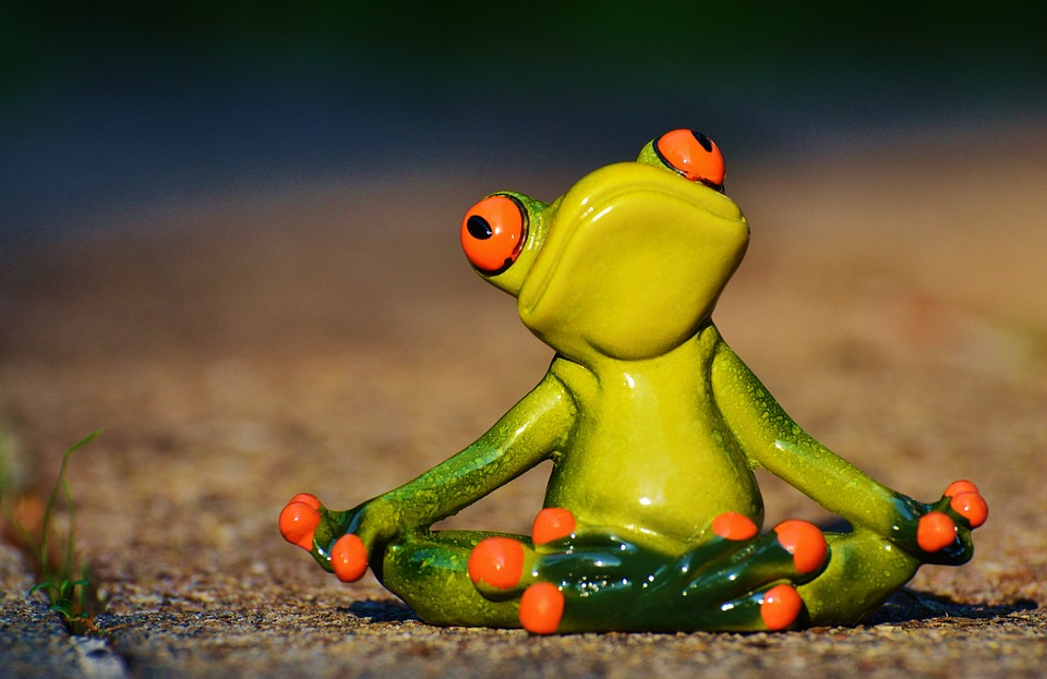 Kikker yoga